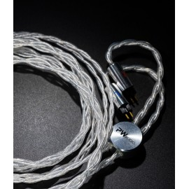 PWaudio - Blackicon series silver gold